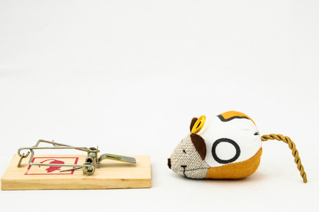 extermination: Wooden Mouse Trap on a White Background
