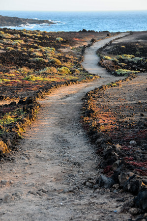 Travel Concept Background - Pathway in the Volcanic Desert Tenerife Canaty Islands Spain photo