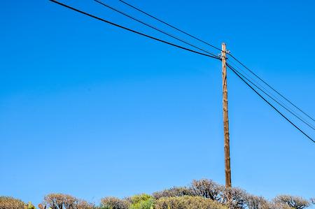 bare wire: Old retro telephone poles in the field