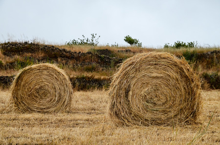 Hay Bale In The Foreground Of Rural Field photo