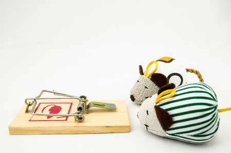 mouse trap: Wooden Mouse Trap on a White Background