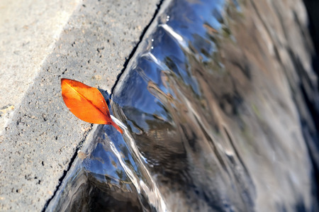 Orange Leaf on a Blue Waterfall on a Sunny Day photo