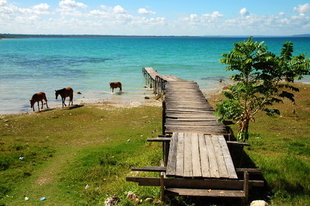 Pier on a Blue Lake with Horses in Guatemala photo