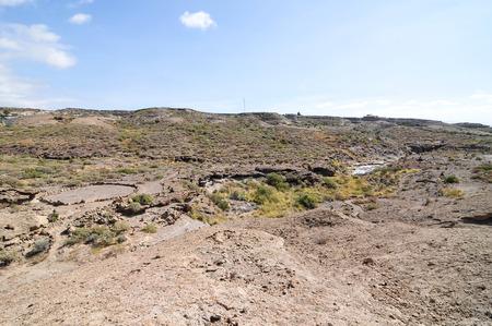 parch: Desert landscape in Tenerife Canary Islands Spain