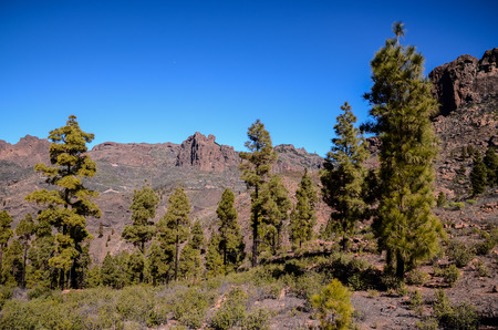 stone volcanic stones: Big Valley in Gran Canaria, Canary Islands, Spain
