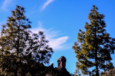 obrero: Roca volc�nica bas�ltica Formaci�n en Gran Canaria Islas Canarias