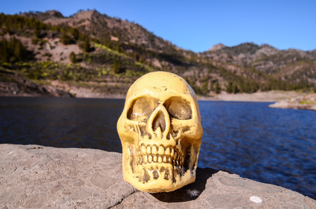 volcanic rock: Abandoned Human Skull on the Volcanic Rock