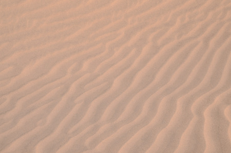 Texture Sand Dune Desert in Gran Canaria Island Spain photo