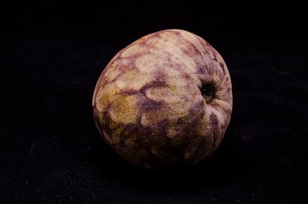 chirimoya: Fresh Green and Brown Ripe Cherimoya Tropical Fruit