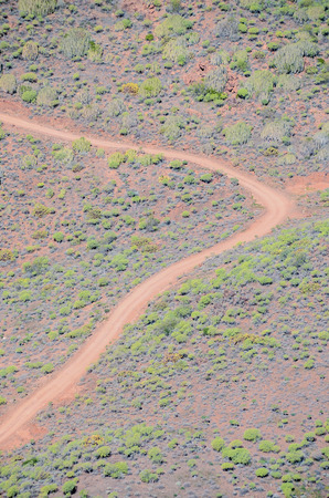 birds desert: Aerial View of a Desert Road in the Canary Islands