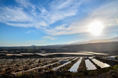 Renewable Energy Concept Solar Panels Field at Sunset photo