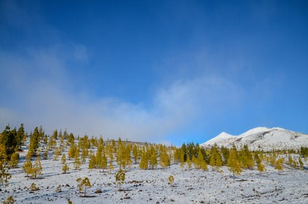in high mountain: Winter Landscape on the High Mountain Range