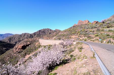 Big Valley in Gran Canaria, Canary Islands, Spain photo