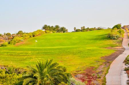 clima tropical: Campo de hierba verde Fiel en un clima tropical Foto de archivo