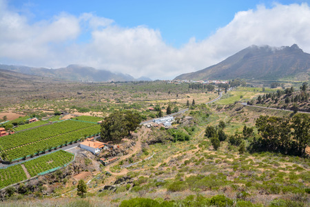 canary islands: Big Valley in Tenerife , Canary Islands, Spain