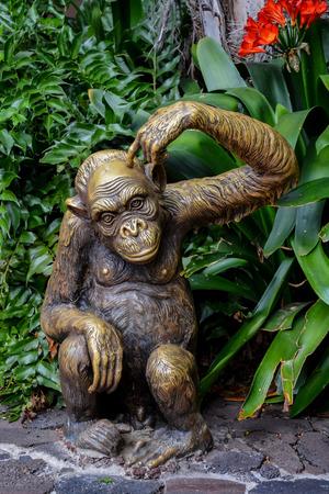 zoogdier: Standbeeld van Wild Chimpansee Zoogdier Ape Monkey Animal