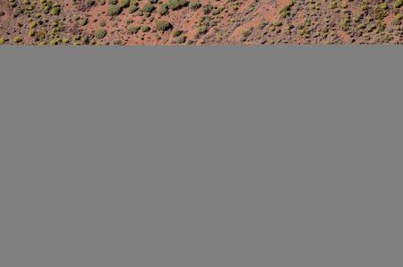 arbre vue dessus: Vue aérienne d'une route du désert dans les îles Canaries