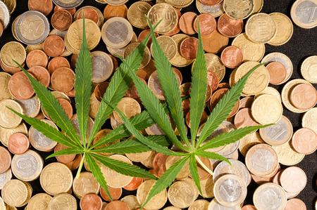 marihuana: Imagen de marihuana y dinero Cannabis Concepto Negocios