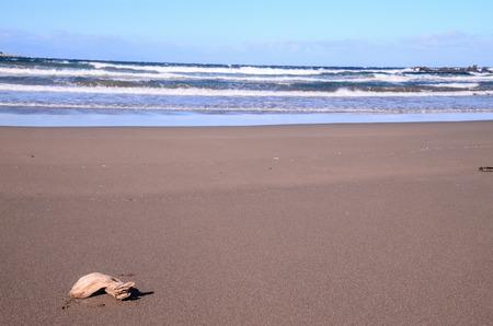 spanish landscapes: Dry Lava Coast Beach in the Atlantic Ocean Stock Photo