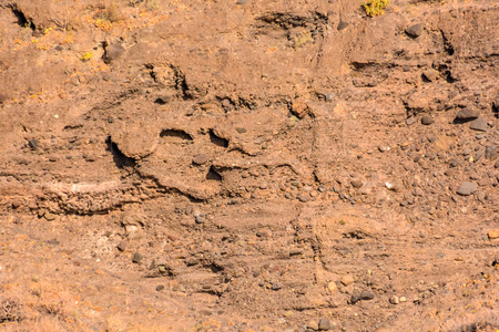 labourer: Dry Lava Basaltic Rock Stone Texture Background