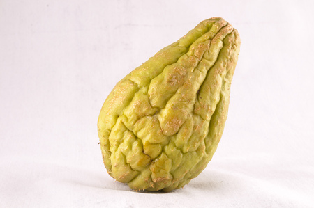 chayote: Chayote (Sechium Edule) is a Vegetable Native of South America