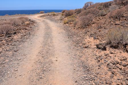 desierto: Larga Dirt recta Carretera del desierto desaparece en el horizonte.