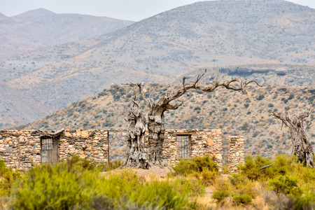 spanish landscapes: View of the Desert Tabernas in Almeria Province Spain