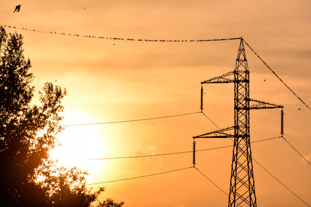 electric grid: Photo Picture of the Classic Electricity Pylon Pole