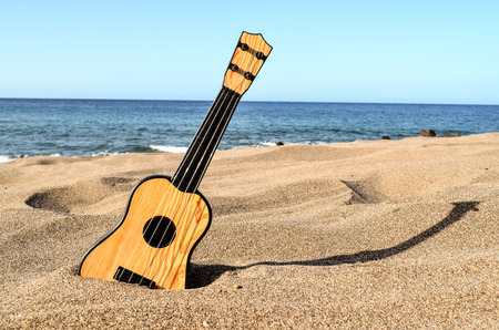 acoustic ukulele: Photo Picture of a Guitar on the Sand Beach