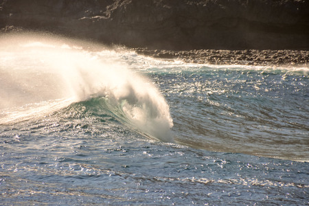 granola: Photo Picture of a BIg Wave in the Ocean