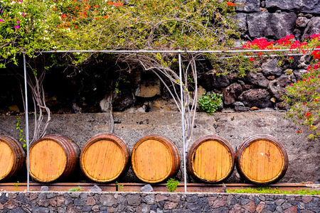 ferment: Photo Picture of a Classic Wooden Wine Barrel Stock Photo