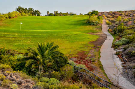 tropical climate: Golf Green Grass Fiel in a Tropical Climate