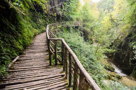 foot bridges: Photo Picture of Deep Forest Pathway Wooden Footbridge Stock Photo