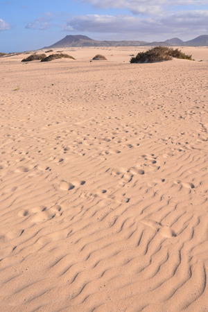 arizona scenery: Photo Picture of a Beautiful Dry Desert Landscape Stock Photo