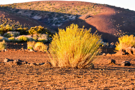 spanish landscapes: View of El Teide Volcan in Tenerife From Gran Canria Mountains Canary Islands Spain