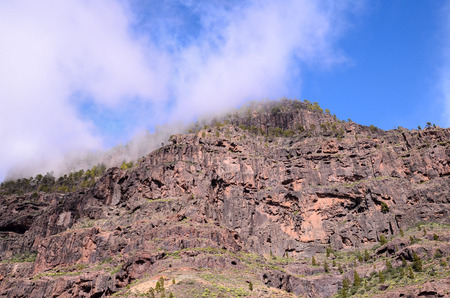 the crags: Volcanic Rock Basaltic Formation in Gran Canaria Canary Islands