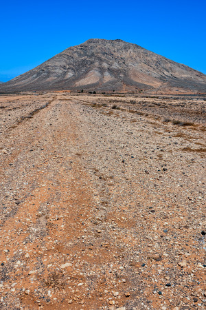 dirt path: Picture of a Countryside Desert Dirt Path