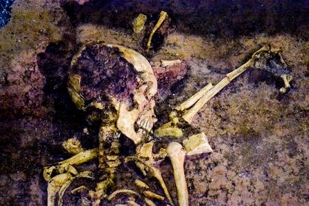 ser humano: foto de la imagen hallazgo arqueológico esqueleto del ser humano Foto de archivo