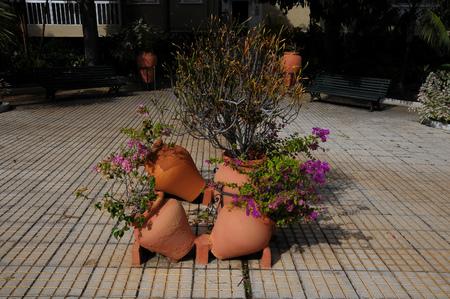 terracotta: Terracotta Vases with Plants on an Urban Garden