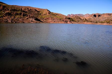gran canaria: Volcanic Rock Basaltic Formation in Gran Canaria Canary Islands