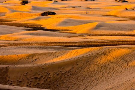 gran canaria: Desert with sand dunes in Maspalomas Gran Canaria Spain Stock Photo