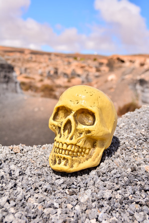 moab: Conceptual Photo Picture of a Human Skull Object in the Dry Desert Stock Photo