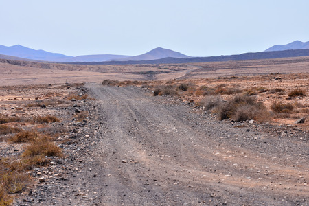 dirt: Photo Picture of a Dirt road leading off into the desert Stock Photo