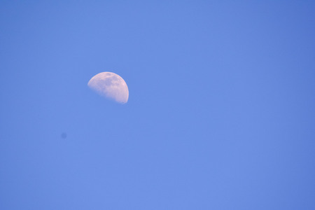 Photo Picture of the Moon in Night Sky