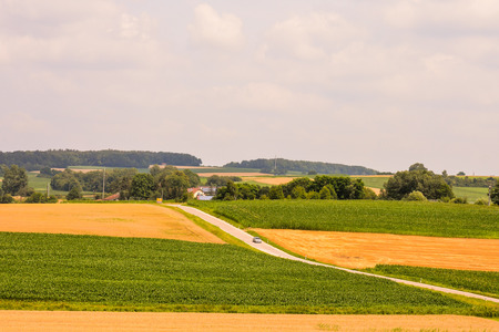 hessen: Photo Picture View of Cultivated Field in the countryside