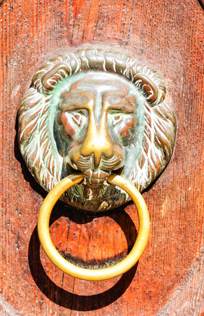 Photo Picture of lions head on an wooden door Stock Photo