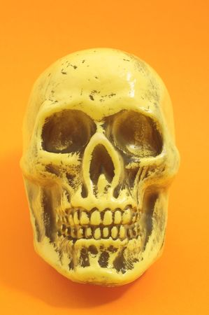 An Ancient Yellow Skull  on a Colored Background