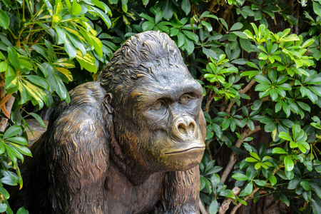 Picture of a Strong Adult Black Gorilla Statue