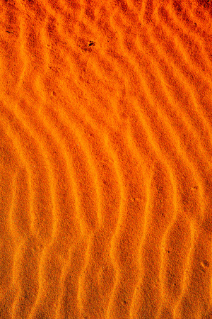 Photo Picture of the Texture Sand Dune Desert