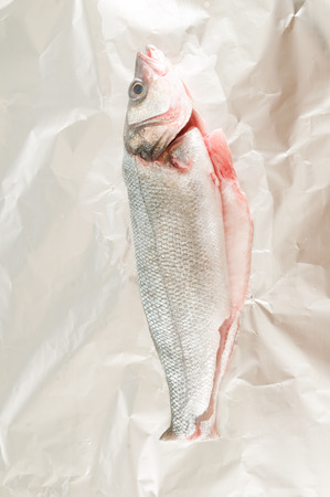 Photo picture of Sea bass on white background Archivio Fotografico